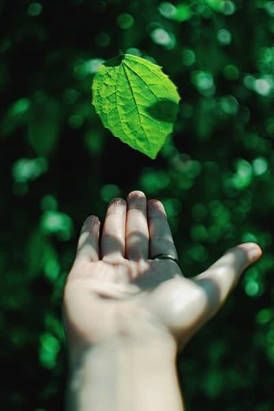 екологичност - здраве и вода
