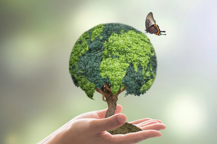 Здравословни Съвети За По-Чиста Среда